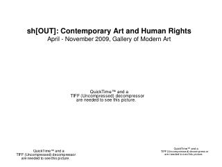 sh[OUT]: Contemporary Art and Human Rights April - November 2009, Gallery of Modern Art
