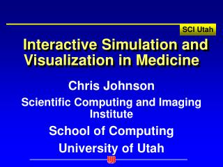 Interactive Simulation and Visualization in Medicine