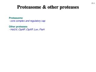 Proteasome & other proteases
