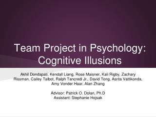 Team Project in Psychology: Cognitive Illusions