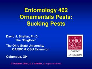 Entomology 462 Ornamentals Pests: Sucking Pests