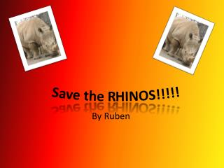 Save the RHINOS!!!!!