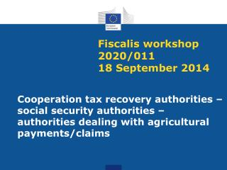 Fiscalis workshop 2020/011 18  September  2014