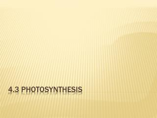 4.3 Photosynthesis