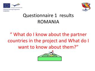 Results questionnaires