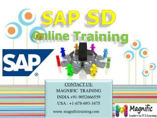 sap sd online training in south africa