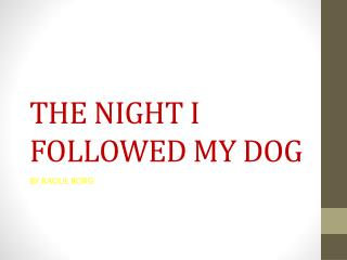 THE NIGHT I FOLLOWED MY DOG