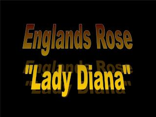 "Englands Rose ""Lady Diana"""