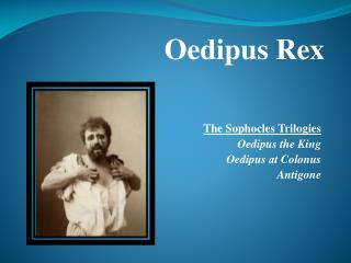 The Sophocles Trilogies Oedipus the King Oedipus at Colonus Antigone