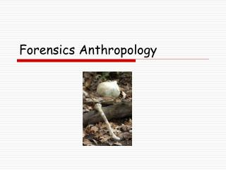 Forensics Anthropology