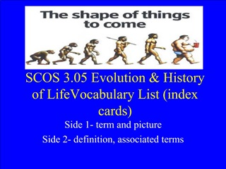 SCOS 3.05 Evolution  History of LifeVocabulary List index cards