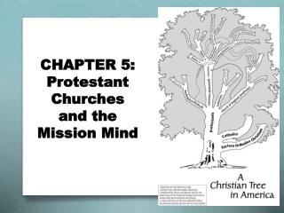 CHAPTER 5:  Protestant  Churches  and the  Mission Mind