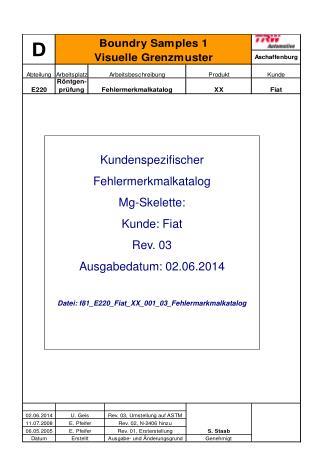 Kundenspezifischer Fehlermerkmalkatalog Mg-Skelette: Kunde: Fiat Rev. 03 Ausgabedatum: 02.06.2014