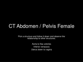 CT Abdomen / Pelvis Female