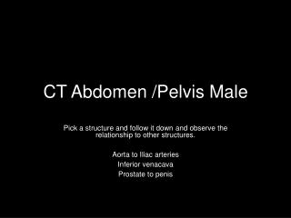 CT Abdomen /Pelvis Male