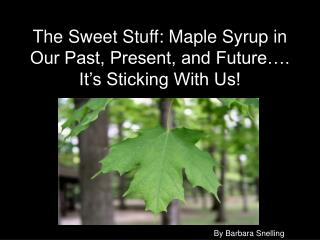 The Sweet Stuff: Maple Syrup in Our Past, Present, and Future…. It's Sticking With Us!