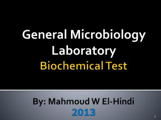 Biochemical Test  By:  Mahmoud  W El-Hindi  2013