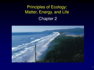 Principles of Ecology: Matter, Energy, and Life