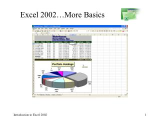 Excel 2002…More Basics