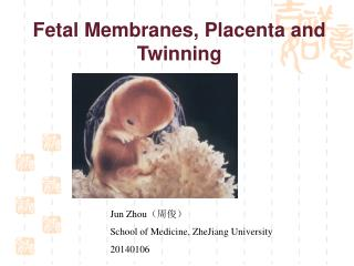 Fetal Membranes, Placenta and Twinning
