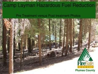 Camp Layman Hazardous Fuel Reduction Pre Treatment versus Post treatment Photos