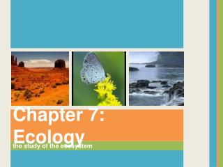 the study of the ecosystem