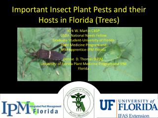 Important Insect Plant Pests and their Hosts in Florida (Trees)