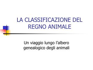 LA CLASSIFICAZIONE DEL REGNO ANIMALE