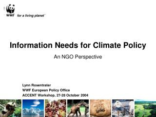 Information Needs for Climate Policy