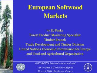 European Softwood Markets
