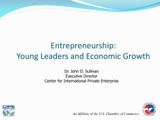 Entrepreneurship:  Young Leaders and Economic Growth