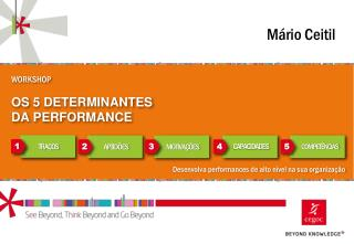 WORKSHOP OS  5 DETERMINANTES  DA PERFORMANCE
