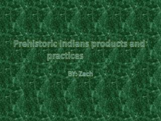 Prehistoric Indians products and practices