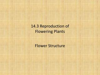 14.3 Reproduction of Flowering Plants