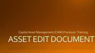 ASSET EDIT DOCUMENT