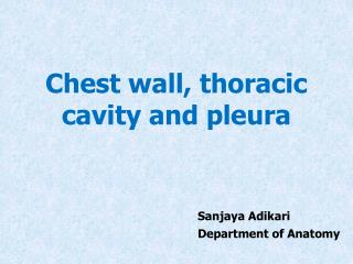 Chest wall, thoracic cavity and pleura