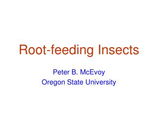 Root-feeding Insects