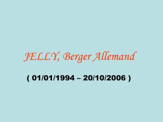 JELLY, Berger Allemand ( 01/01/1994 – 20/10/2006 )