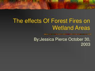 The effects Of Forest Fires on Wetland Areas