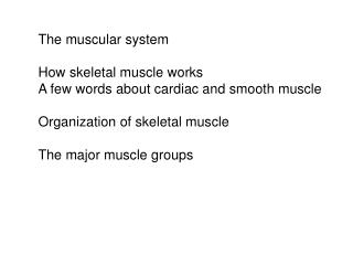 The muscular system  How skeletal muscle works A few words about cardiac and smooth muscle  Organization of skeletal mus