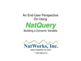 An End-User Perspective On Using NatQuery Building a Dynamic Variable