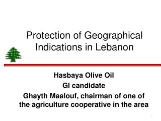 Protection of Geographical Indications in Lebanon
