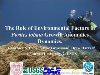 The Role of Environmental Factors in  Porites lobata  Growth Anomalies Dynamics .