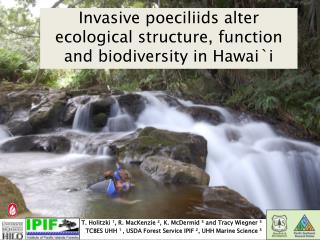 Invasive poeciliids alter ecological structure, function and biodiversity in Hawai`i