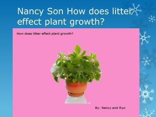 Nancy Son How does litter effect plant growth?