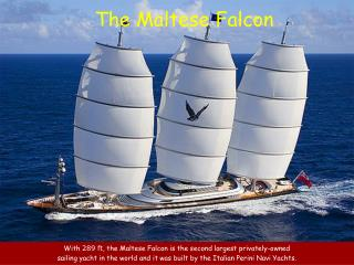 With  289  ft , the Maltese Falcon is  the second largest privately-owned