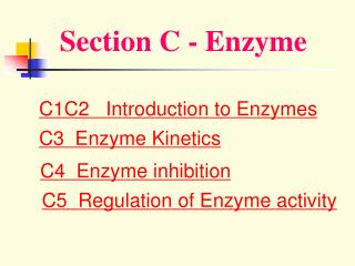 Section C - Enzyme