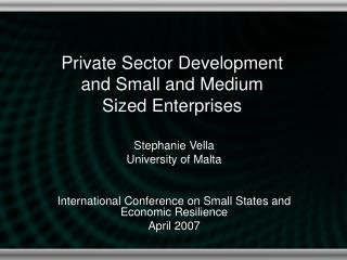 Private Sector Development and Small and Medium Sized Enterprises