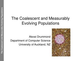 Population Genetics and Conservation
