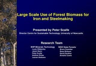 Large Scale Use of Forest Biomass for Iron and Steelmaking